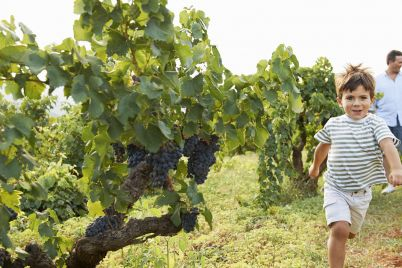 a-renowned-wine-touring-region-that-welcomes-kids-scaled.jpg