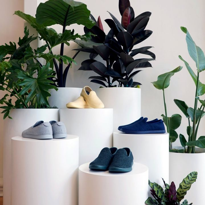 sustainable-shoe-maker-allbirds-files-for-ipo-and-reveals-continued-losses-scaled.jpg